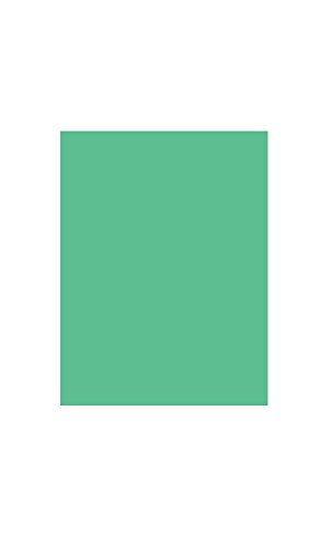 Amscan Mantel Paquete Internacional S/C verde festivo