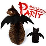 Batman Hunde Für Kostüm Den - NACOCO Pet Halloween Bat Wings Kostüm Cool Batman Design Party Kleidung Klein Katze Hund