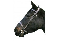 """IV Horse Plain Cavesson Bridle in 1/2"""" Black or Havana Leather sizes Small Pony and Pony 1"""