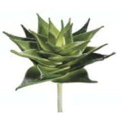 cs4455-gr-tt-8-in-due-tone-piante-succulente-colore-verde-confezione-da-6