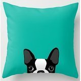 Kenneth Case Stylish Boston Terrier Funny Pattern Double size Printing Unique Throw Pillows Square Concealed Zipper 18X 18 (Two Sides)