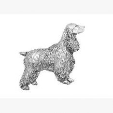 Pewter Cocker Spaniel Dog Pin Badge or Brooch Gift for Scarf, Tie, Hat, Coat or Bag