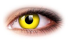 ⭐⭐⭐⭐⭐Yellow Freak gelbe Kontaktlinsenl crazy Kontaktlinsen ohne Stärke inkl. Kontaktlinsenbehälter