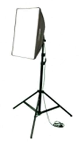 walimex Daylight Set 250 with Softbox 40x60cm, 16301 (40x60cm)