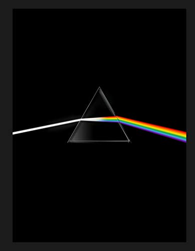 Pink Floyd their mortal remains Le livre officiel par Roger Waters