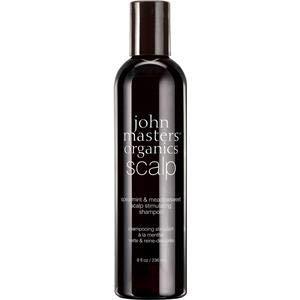 john masters organics spearmint and meadowsweet scalp stimulating Shampoo, 1er Pack (1 x 236 ml) - Rote Bio-conditioner
