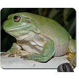 Los blancos rana de árbol ranas alfombrilla de ratón, alfombrilla de ratón (alfombrilla de...