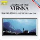 memories-of-old-vienna-by-alfred-gerhardt