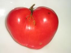 HÉRITAGE NON OGM Coeur de tomate 25 Biélorusse Graines