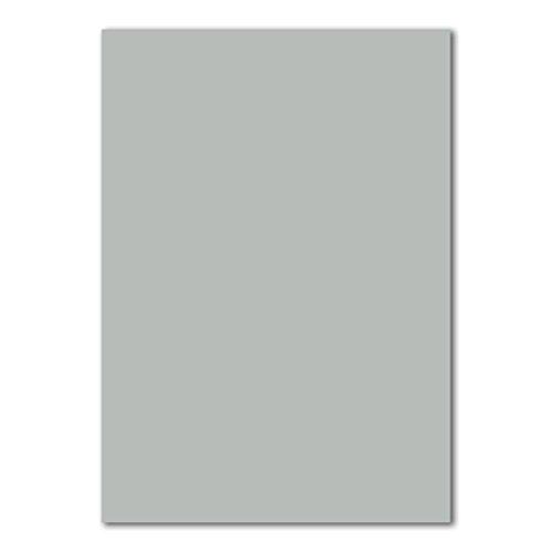 50x DIN A4 Papier Planobogen -Hellgrau - 160 g/m² - 21 x 29,7 cm - Bastelbogen Ton-Papier Fotokarton Bastel-Papier Ton-Karton - FarbenFroh®