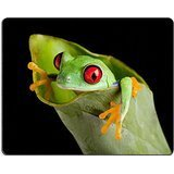 MSD Natural Rubber Gaming Mousepad IMAGE ID: 5989576 Red eyed tree frog on banana leaf -