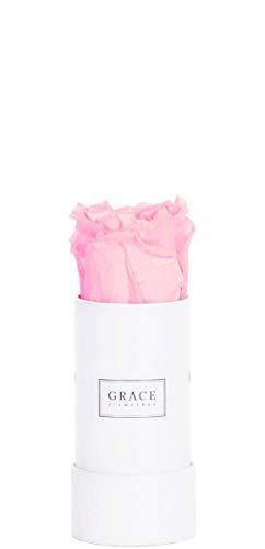 Hohl Rose (GRACE Flowerbox | ROMANTIC PINK | Classic White Bambi Flowerbox | 1 echte konservierte Rosen | 1-3 Jahre haltbare Infinity Rosen | Bekannt aus