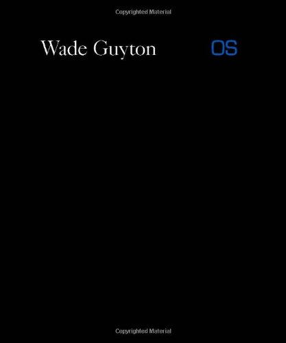 Wade Guyton OS (Whitney Museum of American Art)