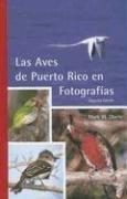 Las Aves de Puerto Rico en Fotografias - Puerto Rico-fotografie