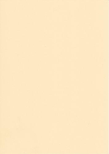 250 fogli DIN A5 camoscio colorato 160g/m² Ufficio di carta. Alta qualità colorata carta pizzo per copia Inkjet Laser. Prima classe per Flyers Newsletter poster fax in arrivo avvisi importanti sistemi di memo ordine di avvertimento