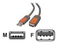 Belkin Pro-Serie USB 2.0-Verlängerungskabel (USB A/USB A, 1,8m) -