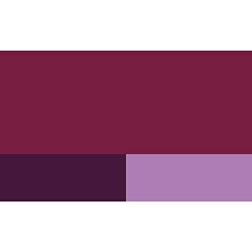 Zoom IMG-1 lefranc bourgeois colore acrilico fine