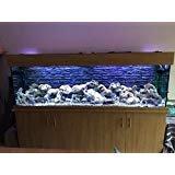 3D Aquarium Hintergründe. Dark Brick Aquarium Hintergründe X4. Schnelle Lieferung von UK Company
