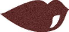 Mavalia Lippenstift Chocolat