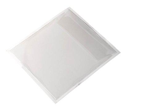 Preisvergleich Produktbild Durable 828019 Selbstklebetasche Pocketfix CD/DVD, transparent, Packung à 100 Stück