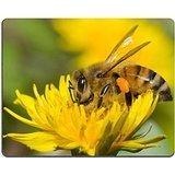 Luxlady alfombrilla para ratón abeja y diente de león flor imagen ID 5205869