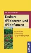 Essbare Wildbeeren und Wildpflanzen: Sammeltipps, Verwendung, giftige Doppelgänger