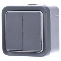 Legrand - 069725 pulsador doble gris plexo ii monob. sup. Ref. 6565120050