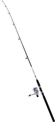2-teilige Steckrute Angelset Rute Angel Forelle Barsch Spinning Fishingequipment Angelausrüstung 200 cm, 10-30 g Farbe Silber/Schwarz (Angeln Spinning)