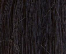 ellen wille Eyepower Augenbrauen Make-Up permanent - 001 black -