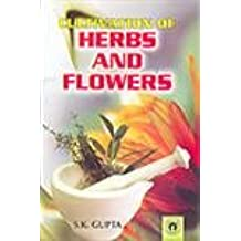 Cultivation of Herbs and Flowers