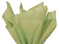 Bulk SAGE GREEN Tissue Paper 15 x 20 - 50