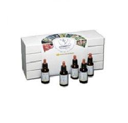 Healing Herbs Bachblüten Set kartoniert, 1er Pack (1 x 1.2 l)