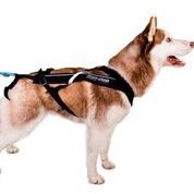Non-Stop dogwear - Arnés para perros 'Non-Stop Freemotion', negro, 7