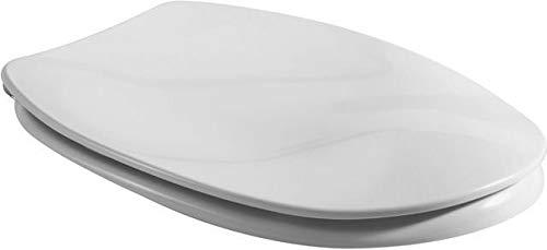 Villeroy & Boch Colani WC Sitz paßt nur zu Colani 999961 Scharniere verchromt Weiß Alpin, 99996101