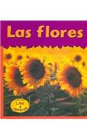 Las Flores = Flowers (Plantas/Plants) por Patricia Whitehouse