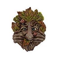 Fiesta Studios Cheeky Mouth Treant Face Wall Plaque Garden Greenman Decorative Gift Decor. 17cm