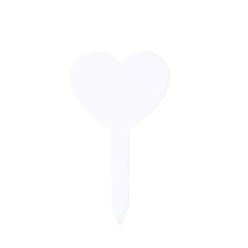 20 languette en plastique en forme de coeur montées amour succulentes de jardinage onglet mise à la terre