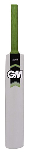 GM Argon Mini Autograph Bat (not meant for playing)