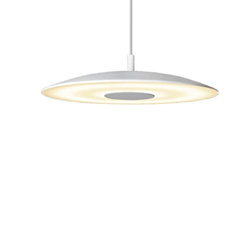 Leichte runde Aluminium LED Kronleuchter, einfache Restaurant Cafe Buchhandlung Kunst Dekoration Deckenleuchte, Moderne Peeling Glas Lampe, Weiß 15W warmweißes Licht -