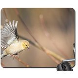 american-goldfinch-in-flight-mouse-pad-mousepad-birds-mouse-pad