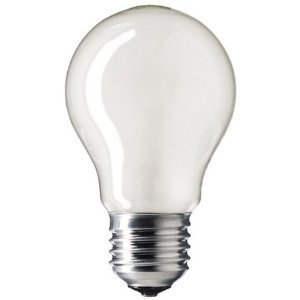 60w-es-gls-rough-service-bulb-10-pack