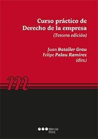 Curso práctico de Derecho de la empresa (Manuales universitarios) por Felipe Palau Ramírez