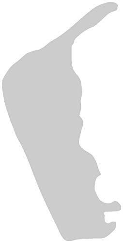 Samunshi® Aufkleber Insel Amrum Autoaufkleber in 7 Größen und 25 Farben (4x8cm silbermetalleffekt)