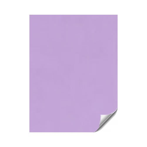 Purple Paper: Amazon.co.uk