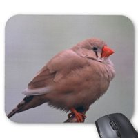Little Fat Bird With A Red Beak Rectangular Mousepad Lovely Bird Mouse Pad Customized Mousepad Suit For Mouse