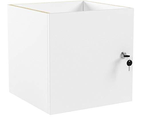 INWONA Abschließbare Tür für IKEA Kallax Regal Schließsystem: gleichschließend/Kallax Tür mit Schloß und Rückwand in weiß - ideal für Lehrerzimmer Arbeitszimmer Kindersicherung