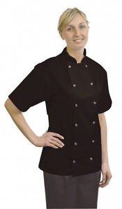 "Price comparison product image Chef's Basic Stud Short Sleeve Jacket Black Large 44""-46"" Chest | Genware Chefs Clothing, Chefs Jacket, Cooks Jacket - Polycotton Mix"