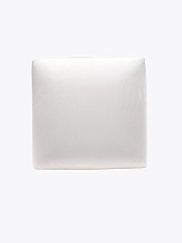 The White Willow mémoire de forme carrée mousse coussin decorative housse en polyester blanc insérer cousin jeu de 2 pièces de 20 \\