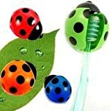 Unknown Toothbrush Holders - Best Reviews Guide