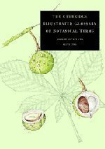 The Cambridge Illustrated Glossary of Botanical Terms by Hickey, Michael, King, Clive 1st (first) Edition [Paperback(2001/4/9)]